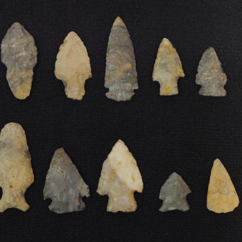 Arrowheads Busby Collection