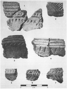 An archaeological seriation of pottery sherds. Note how the patterns of lines change over time and over different regions. Numbers 5-7 are of an earlier style than numbers 2-4, while number 1 was likely traded from Michigan All of these pottery sherds were found at the Edwards site, just west of London.