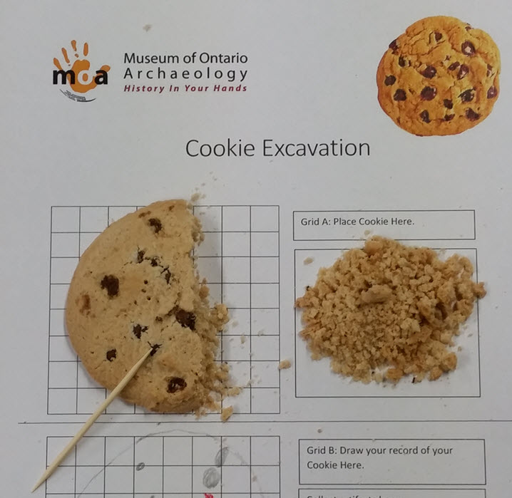 Image of cookie excavation